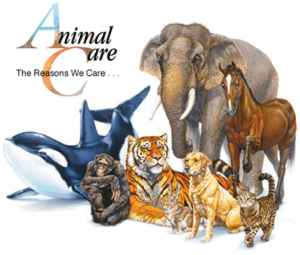 ANIMALS ACT