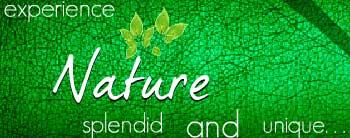 Starron Nature Resorts