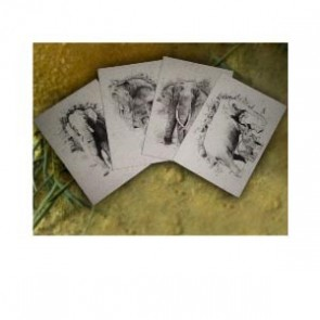 Single Greeting Card (P) - Pack of 6 Cards