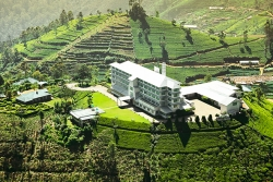 Four Eco-friendly hotels to come up in Kandapola Brookside Tea Estate