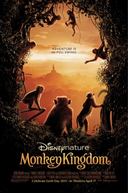 In The Monkey Kingdom
