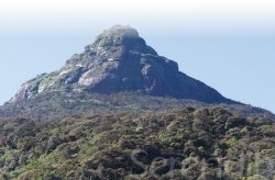 Step By Step The Steep 8 Hour Climb To Reach Sacred Peak Sri Pada: The Mount Of Sri Lanka's Rising Sun