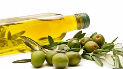 Olive Oil Protects Brain From Alzheimer's