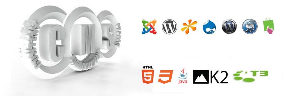 Prefessional Web Designing - Affordable Price