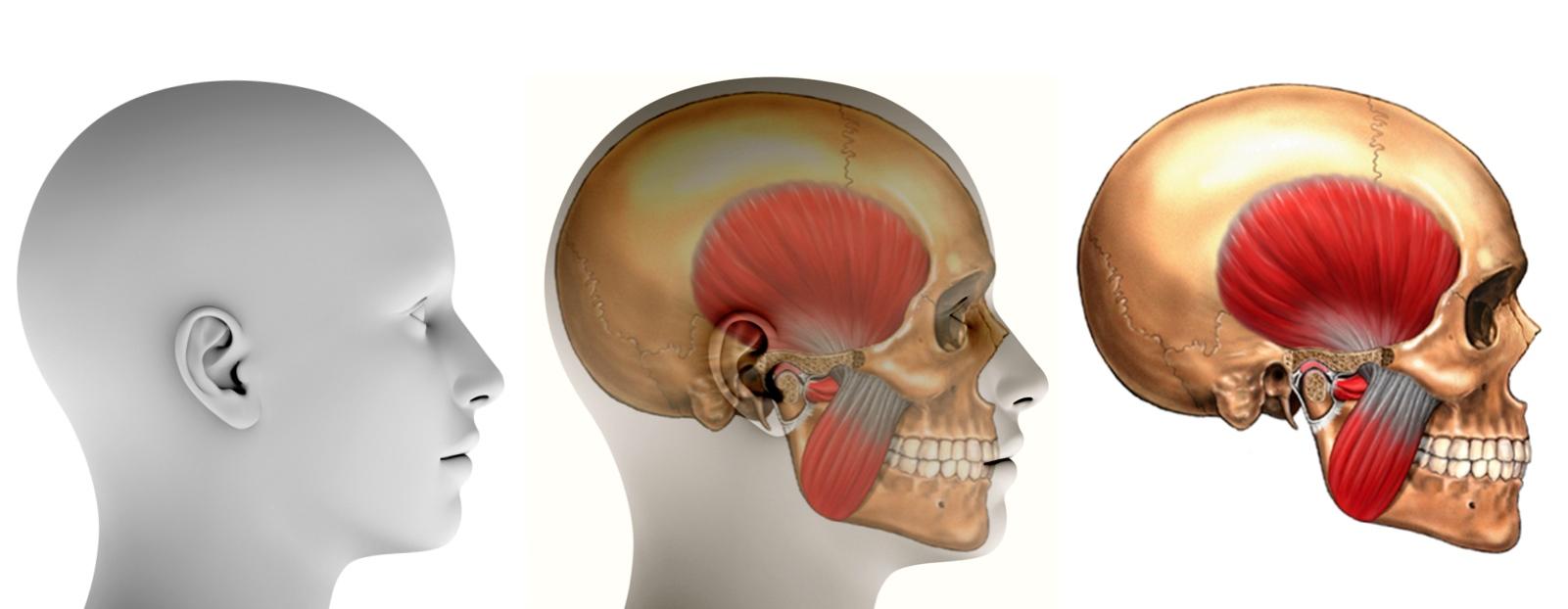 And maxillo facial surgeons