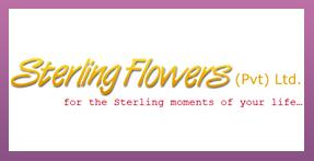 Sterling Flowers