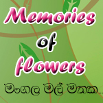 Memories Of Flowers