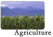 A/L Agriculture @ Badulla