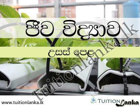 A/L Biology @ Trust Education, Wattala