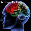 2016 A/L Logic Theory @ Vision Institute, Badulla