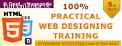 100% Practical Web Development Training Program