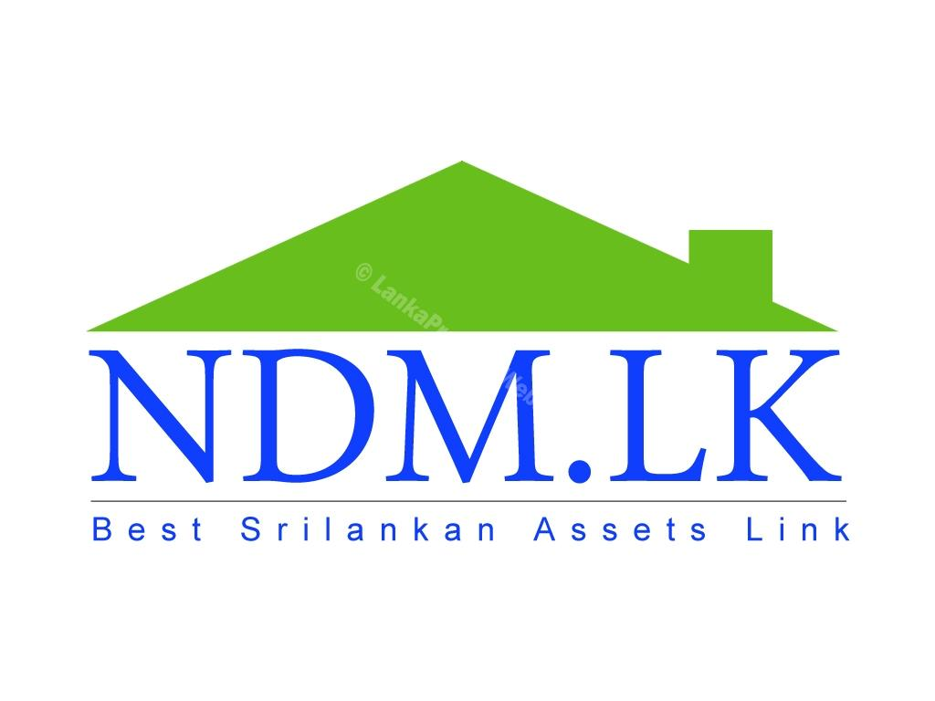 Ndm Estate Agent
