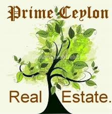Prime Ceylon Real Estate