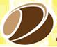 DILSHARA INTERNATIONAL PVT LTD