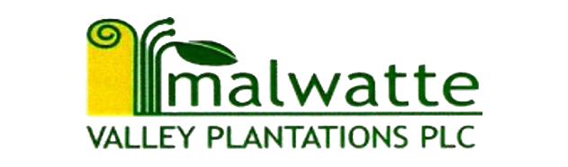 MALWATTE VALLEY PLANTATIONS PLC