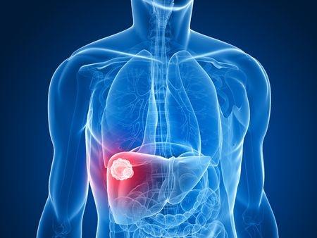 Gastroenterologist And Hepatologist