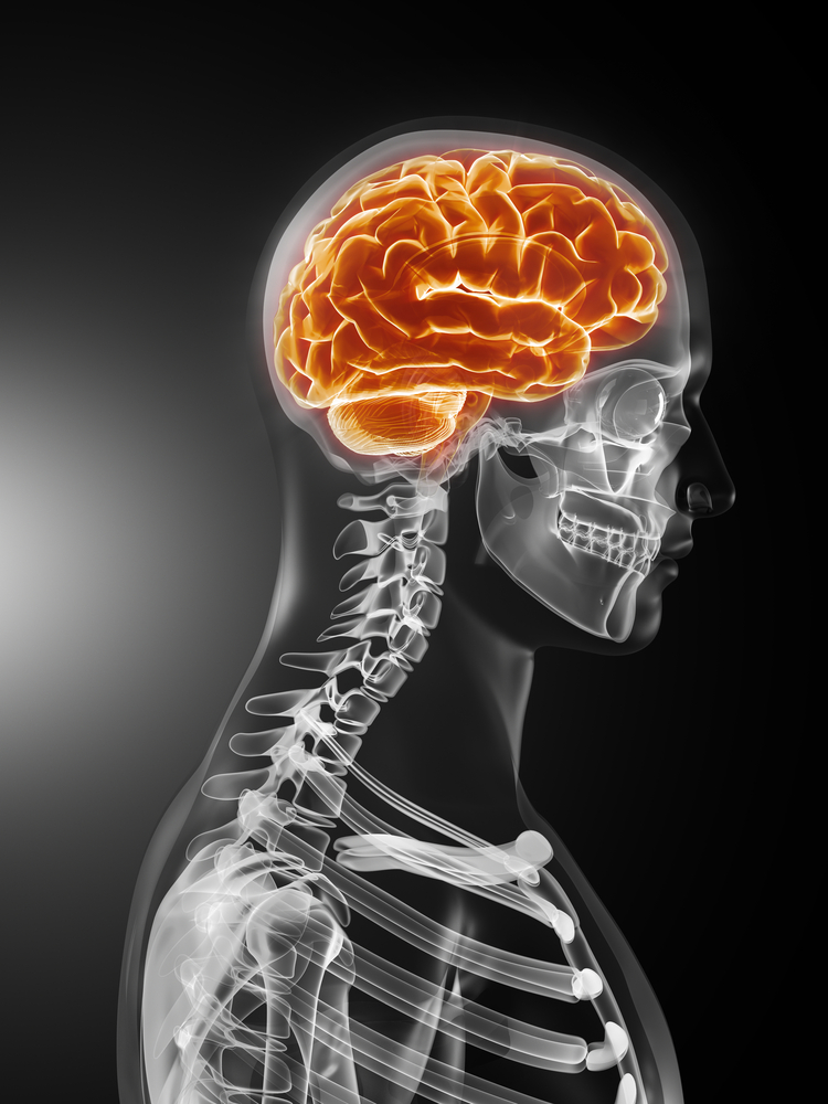 Neuro Physician