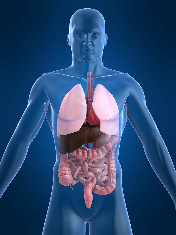 Gastroenterologist Surgeon
