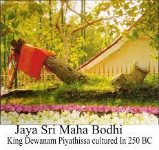 Jaya Siri Maha Bodhi