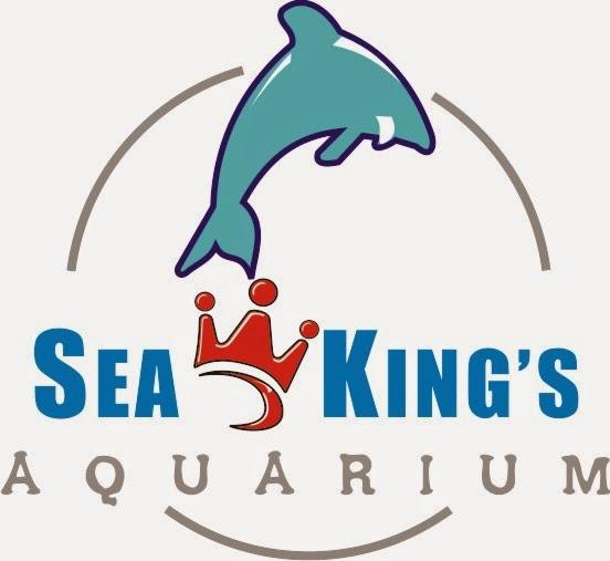 Seakings Aquarium