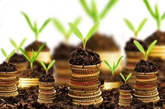 Tharanga Investments Ltd