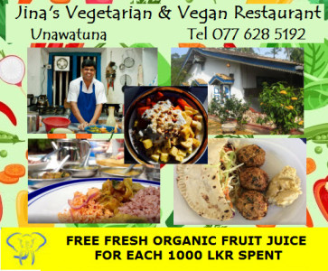 Jinas Vegetarian and Vegan Restaurant