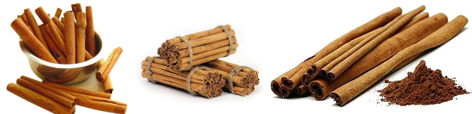 Carlton Estate Cinnamon Exporters