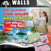 Dark Shade Walls - Wall Paper Company