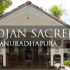 Cadjan Sacred - Anuradhapura
