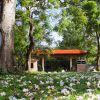 Vijayaba National College