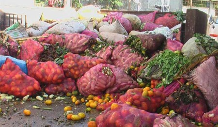 Sri Lanka incurs Post-harvest losses of Rs. 20 billion annually: COPA