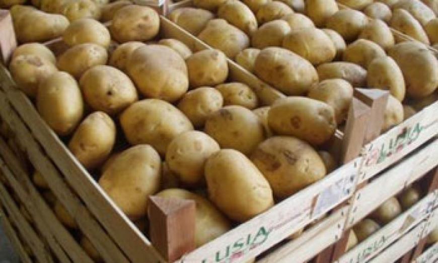 Special commodity levy on imported potatoes increased