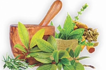 All Ayurvedic Hospitals to remain open during curfew